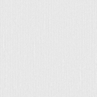 【ミラーボイル】ドレッシーな無地のレースカーテン&シェード【HS-4534】ホワイト